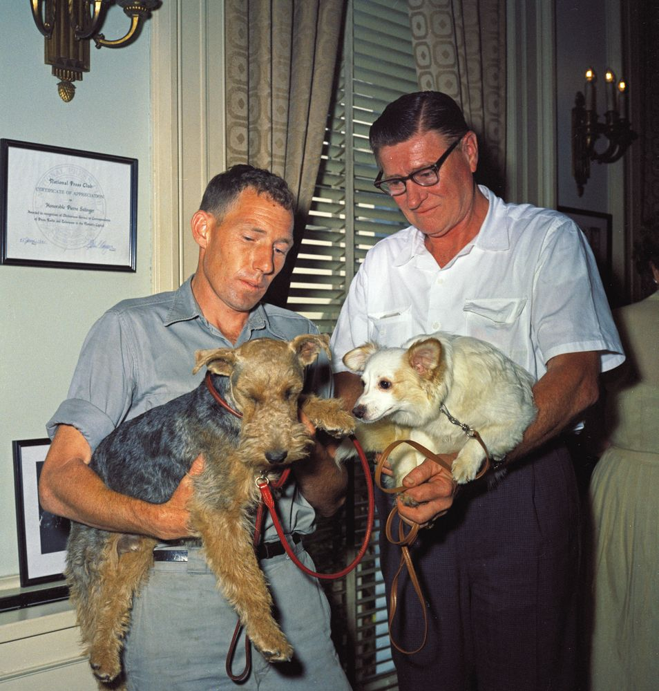 Οι προεδρικοί σκύλοι...