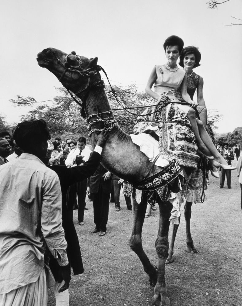 essay on a camel ride