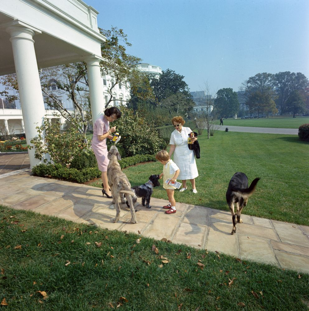 St C363 6 63 John F Kennedy Jr With Family Dogs