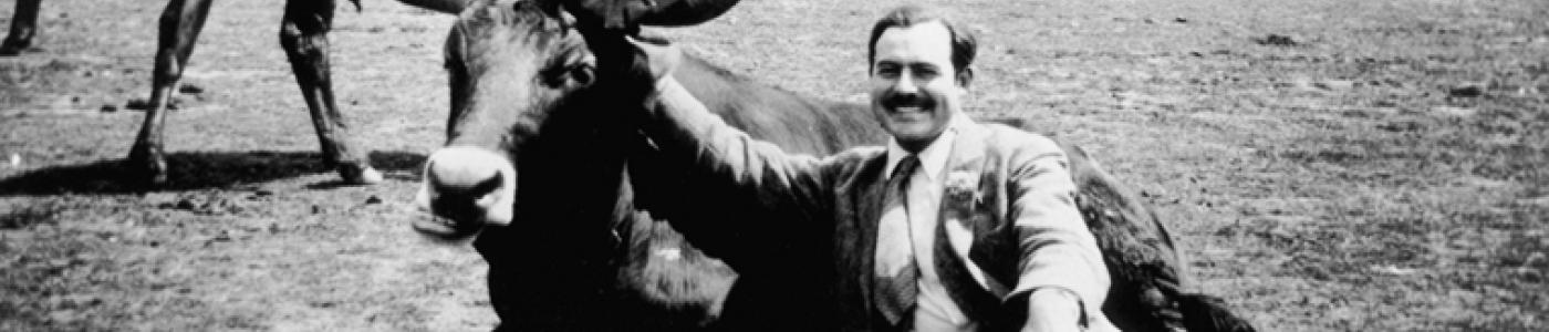 EH7976P Ernest Hemingway with a bull, near Pamplona, Spain.