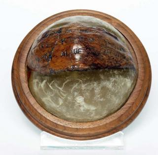 Coconut paper weight
